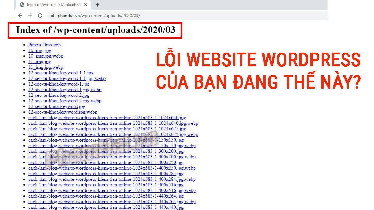 Cách ẩn hiển thị file trong thư mục website wordpress